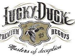 Lucky Duck decoy